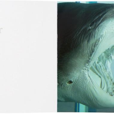 ダミアン・ハーストの画像 p1_9