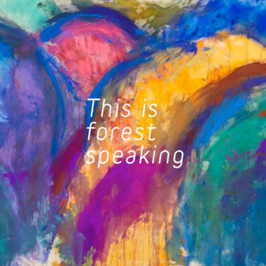 「This is forest speaking~もしもし、こちら森です~」(税込2,800円)