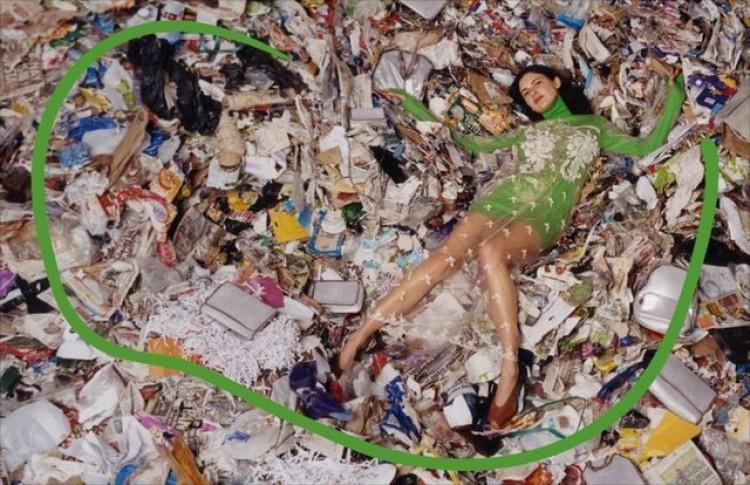 ゴミ処理場で撮影されたステラ ...